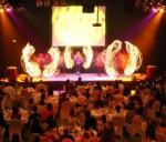 Phoenix AFLAME feautre stage show