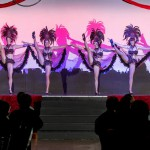 Vegas or tropical Showgirls - range of costumes available