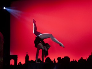 acrobats in all styles - roving or feature act